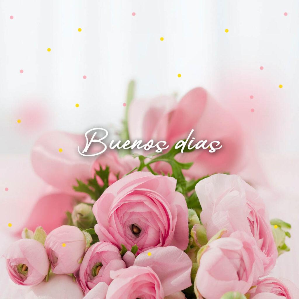 buenos días flores