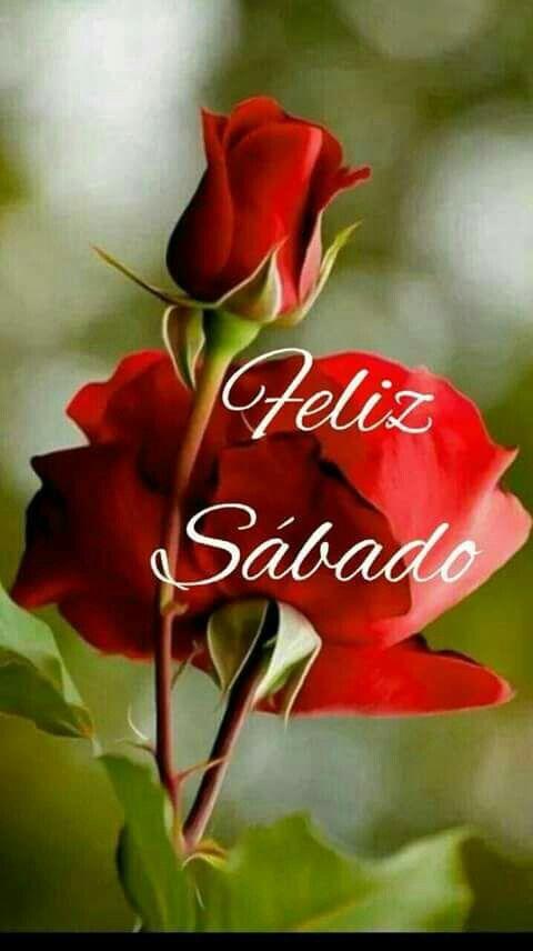 feliz sábado con flores