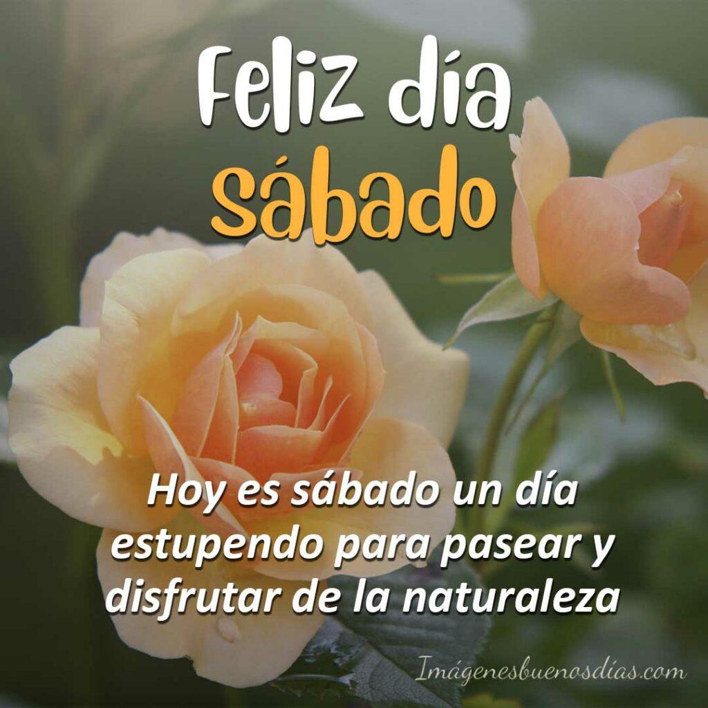 Feliz Sábado Buenos Días