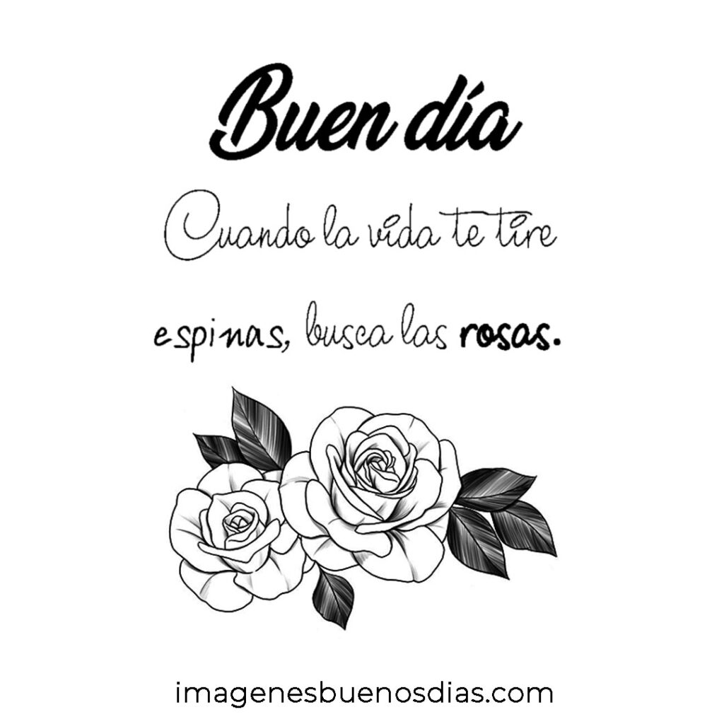 imágenes de buenos días con rosas