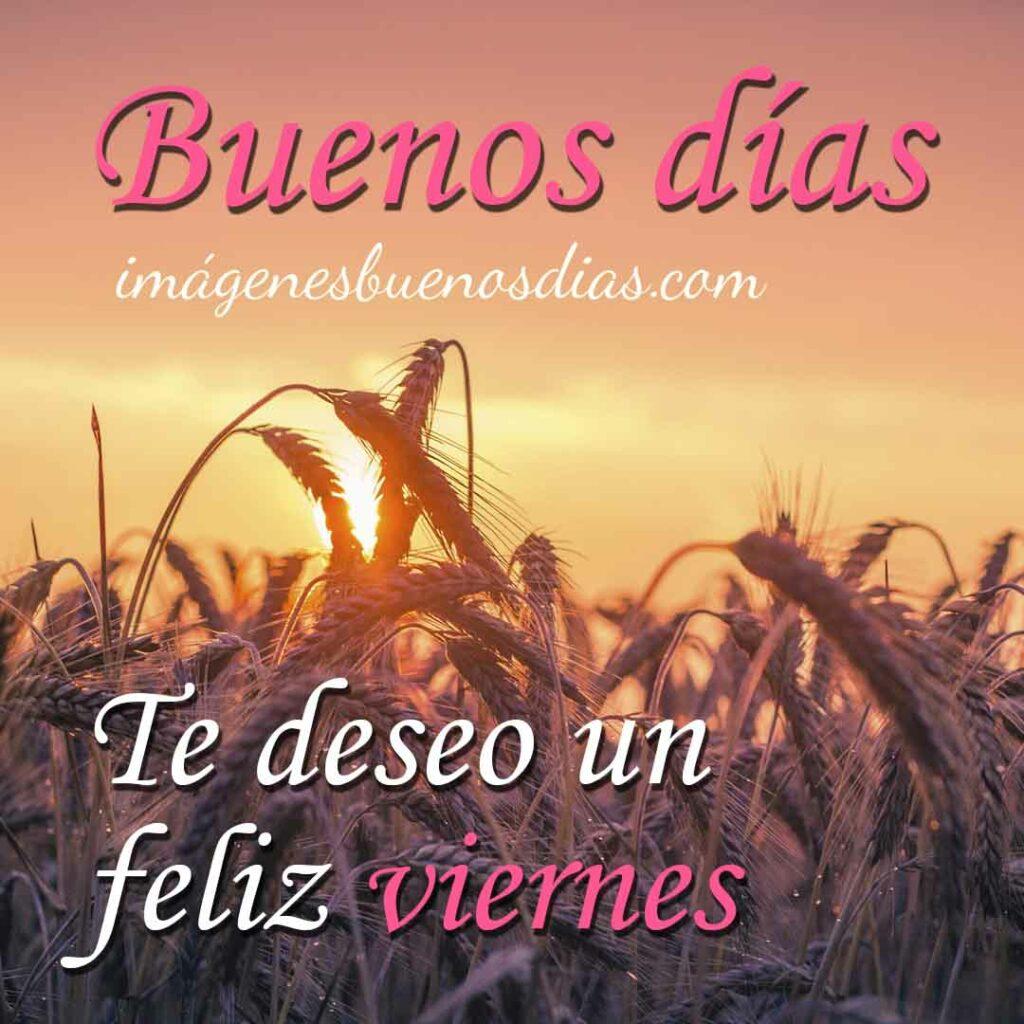 Buenos Días Viernes
