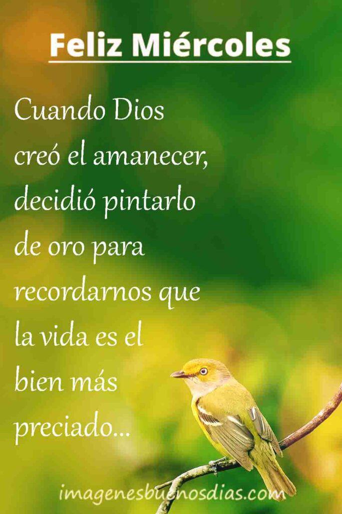 Cuando Dios creo el amanecer, decidió pintarlo de oro para recordarnos que la vida es el bien mas preciado... Feliz Miércoles.