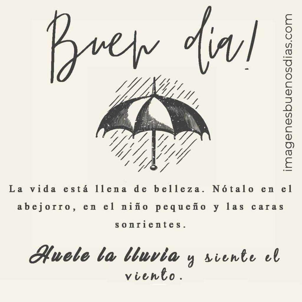 La vida esta llena de belleza. Nótalo en el abejorro, en el niño pequeño y las caras sonrientes. Huele la lluvia y siente el viento.