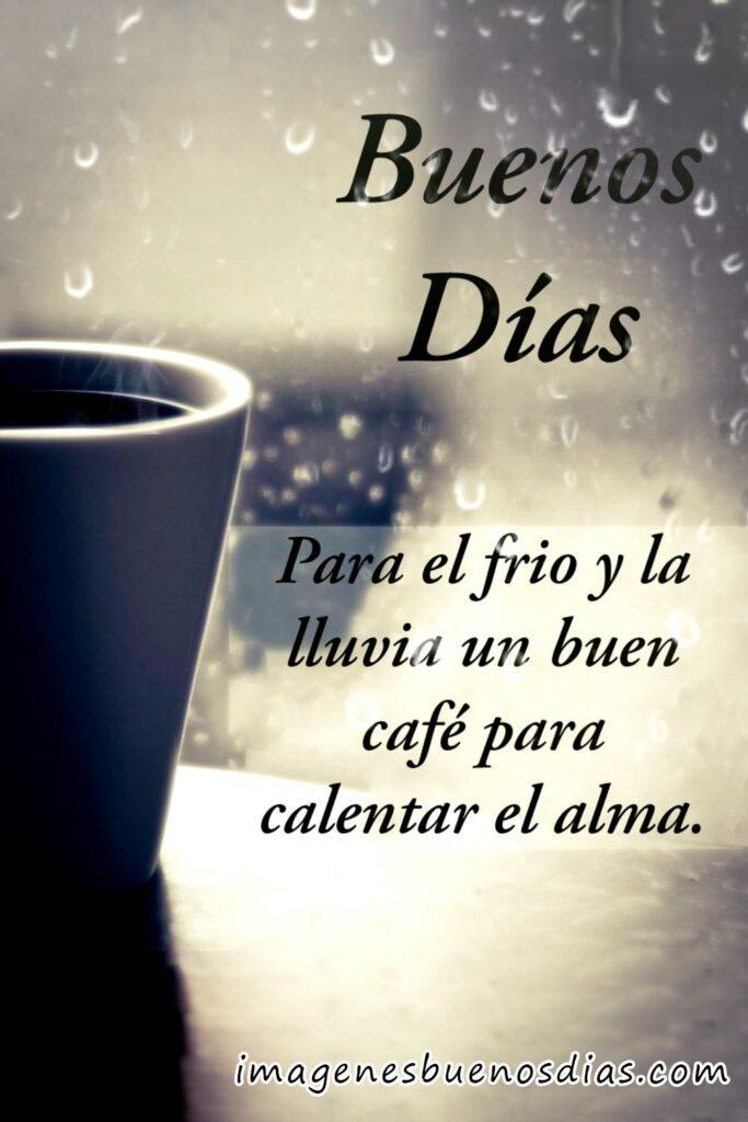 café buenos días frases
