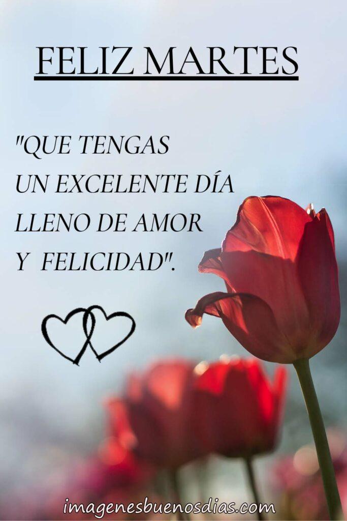 Que tengas un excelente día lleno de amor y felicidad.